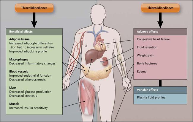 efectos y consecuencias de los esteroides